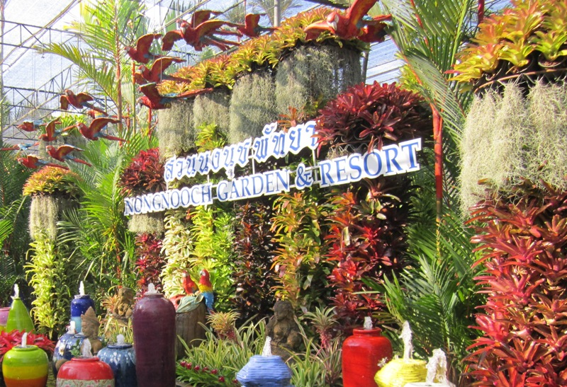 Тропический сад Паттайя Таиланд